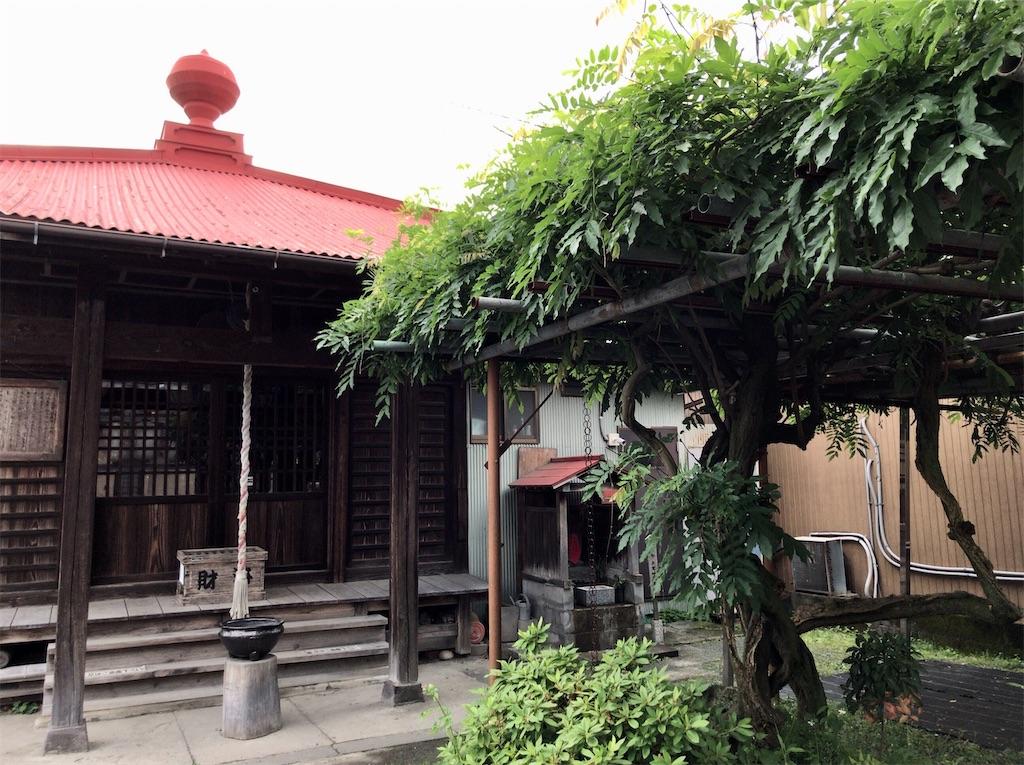 f:id:yokohamamiuken:20200523144653j:image