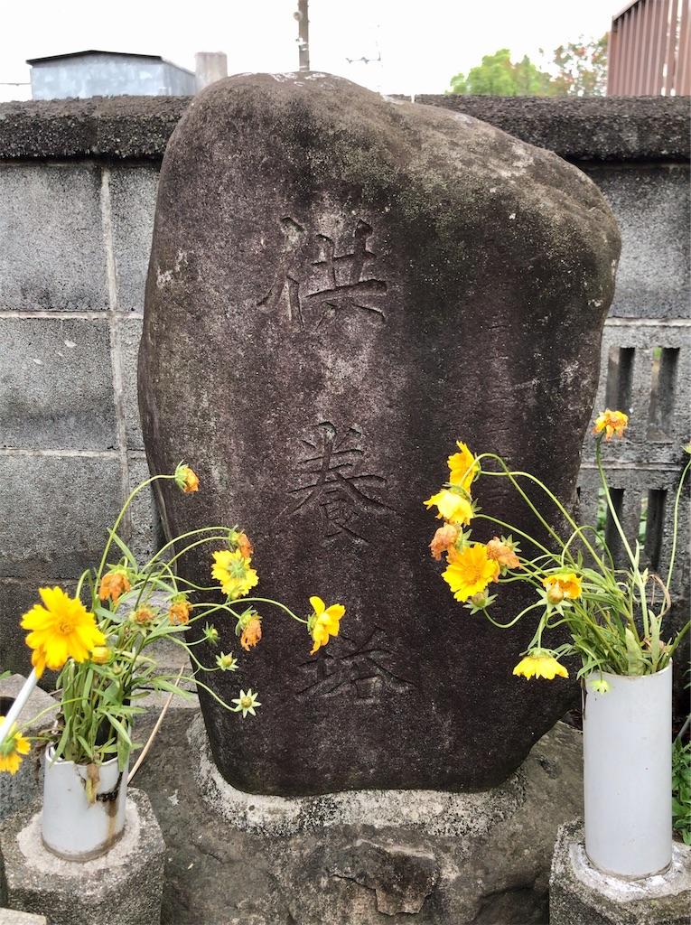 f:id:yokohamamiuken:20200523144749j:image