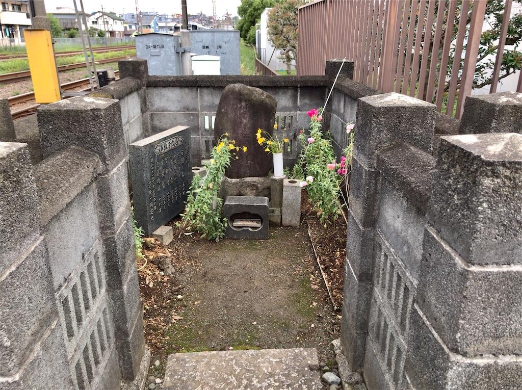 f:id:yokohamamiuken:20200523144816j:image