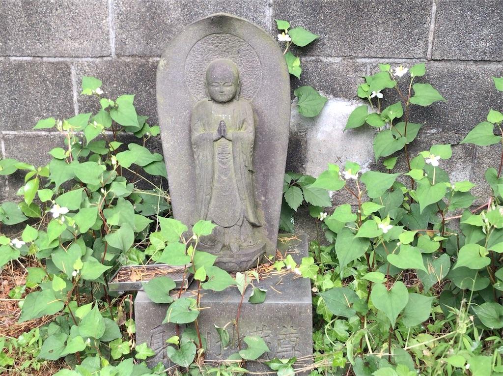 f:id:yokohamamiuken:20200523145203j:image