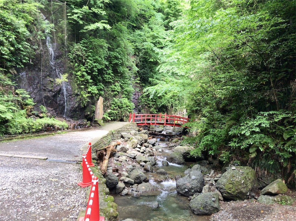 f:id:yokohamamiuken:20200523151029j:image