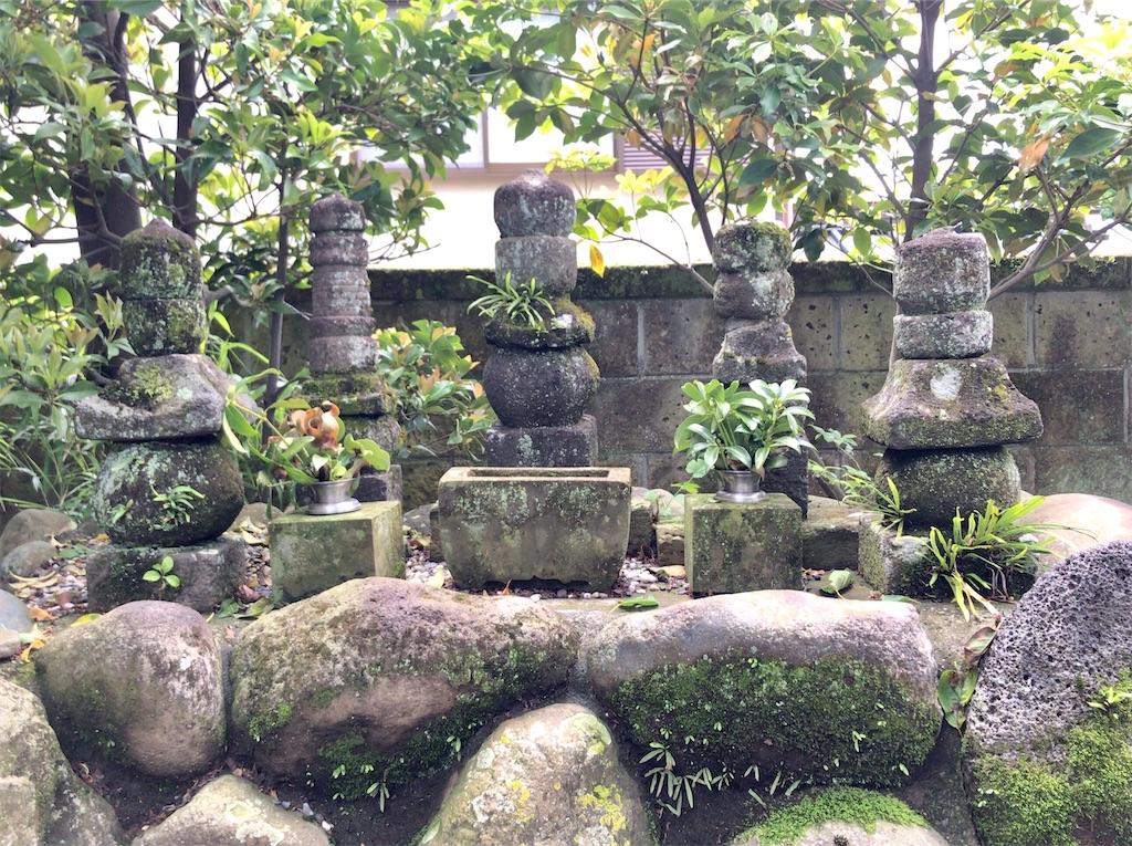 f:id:yokohamamiuken:20200523151338j:image