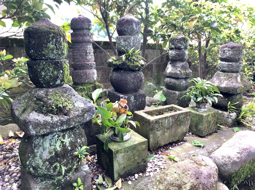 f:id:yokohamamiuken:20200523151351j:image