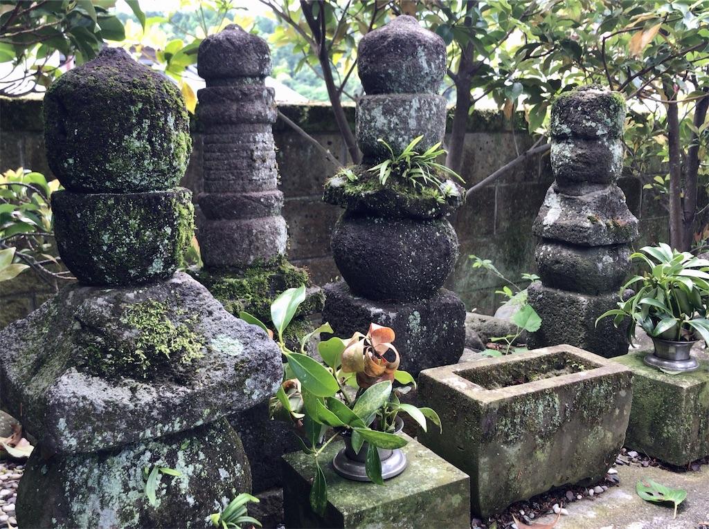 f:id:yokohamamiuken:20200523151355j:image