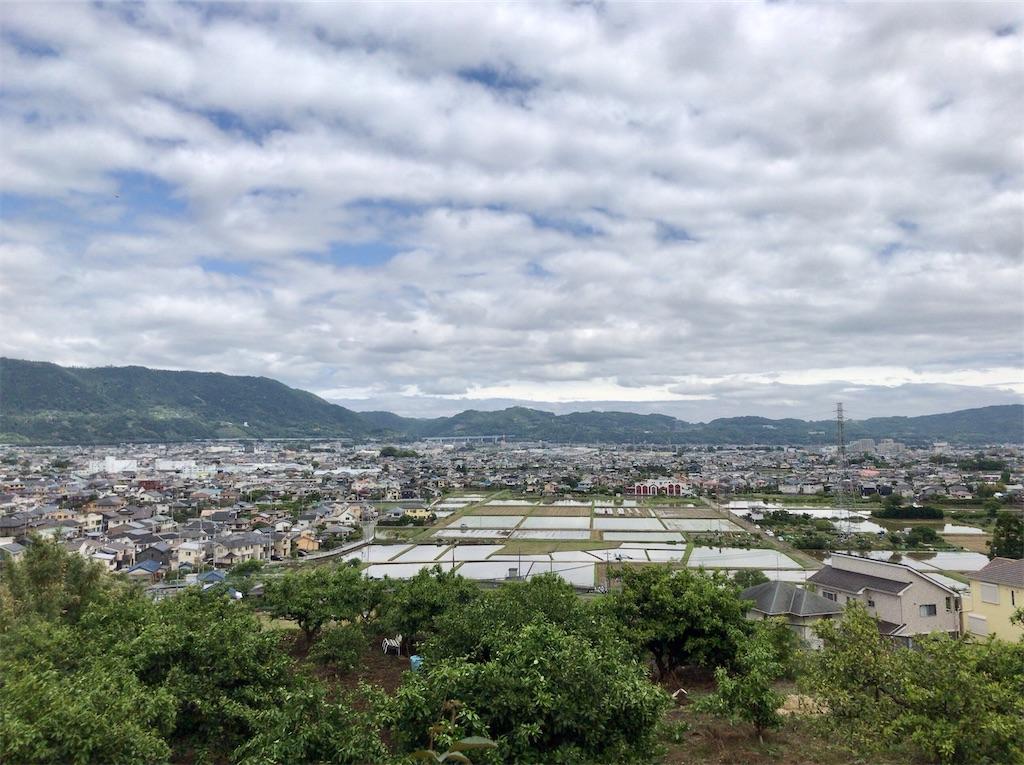 f:id:yokohamamiuken:20200523151918j:image