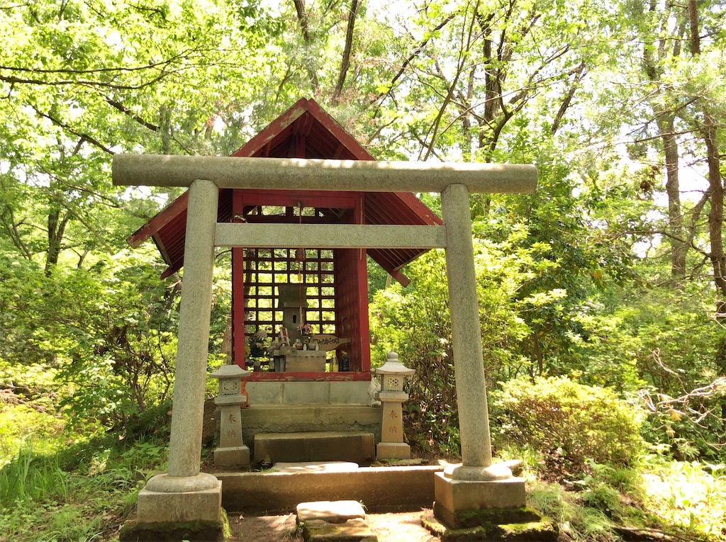 f:id:yokohamamiuken:20200523152017j:image