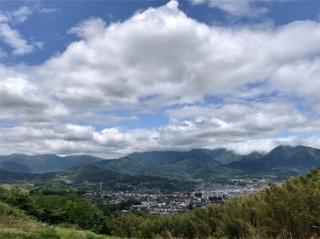 f:id:yokohamamiuken:20200523152043j:image