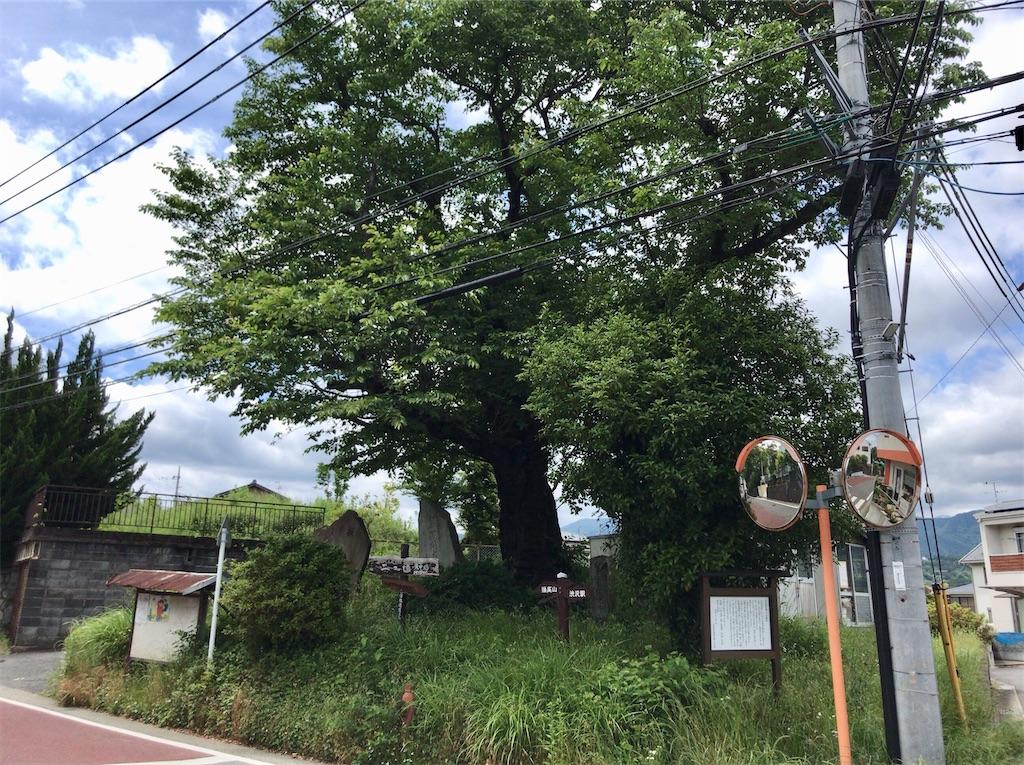 f:id:yokohamamiuken:20200523152404j:image