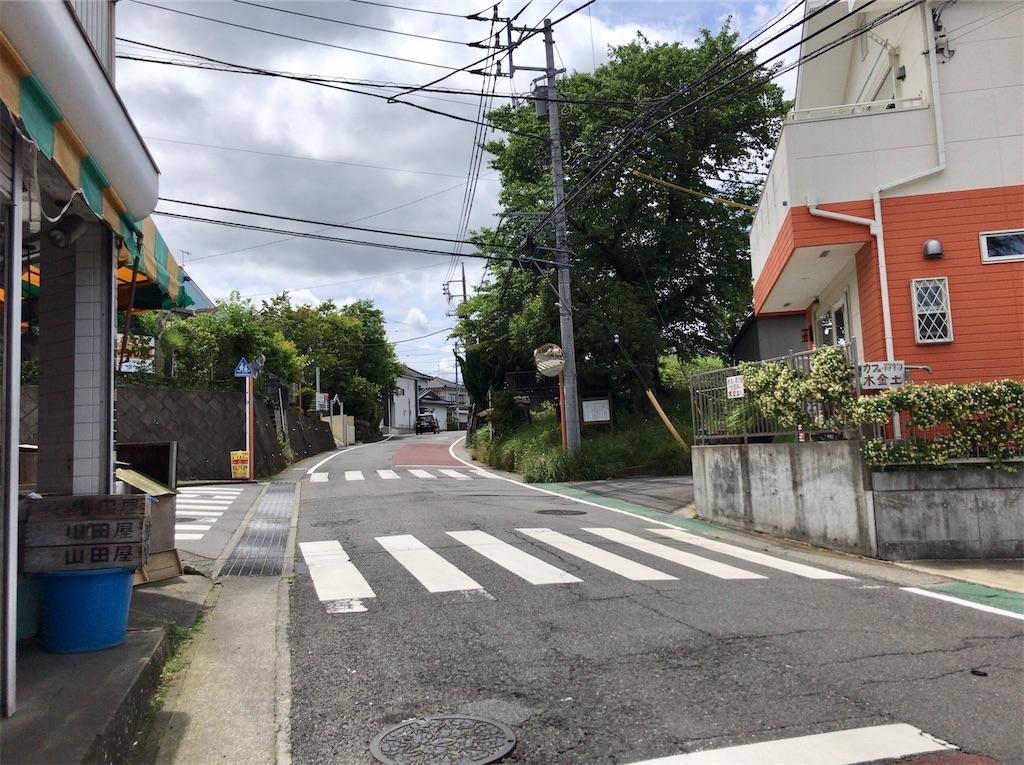 f:id:yokohamamiuken:20200523152426j:image