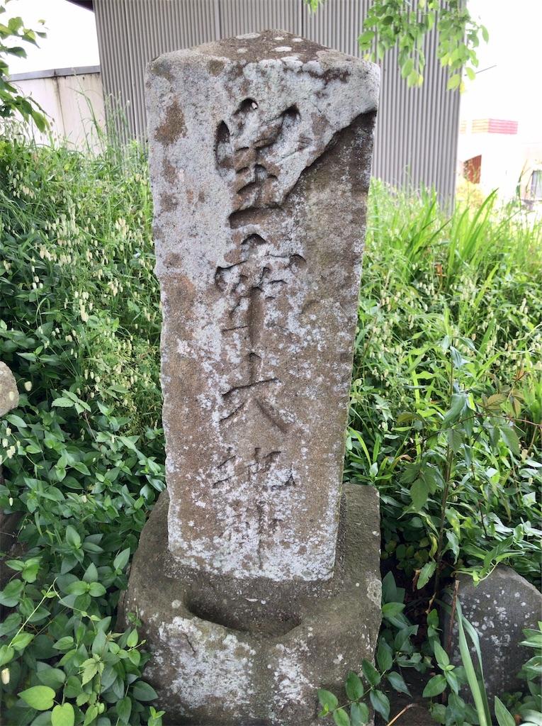 f:id:yokohamamiuken:20200523152440j:image