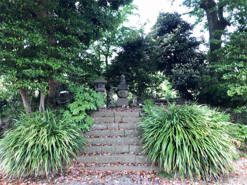 f:id:yokohamamiuken:20200523152710j:image
