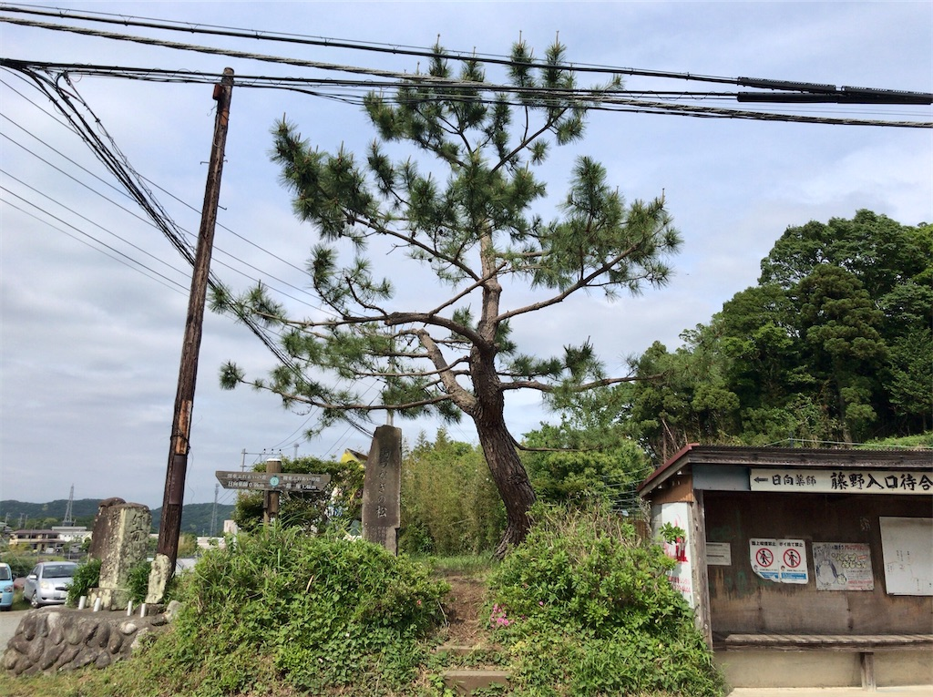 f:id:yokohamamiuken:20200523152932j:image