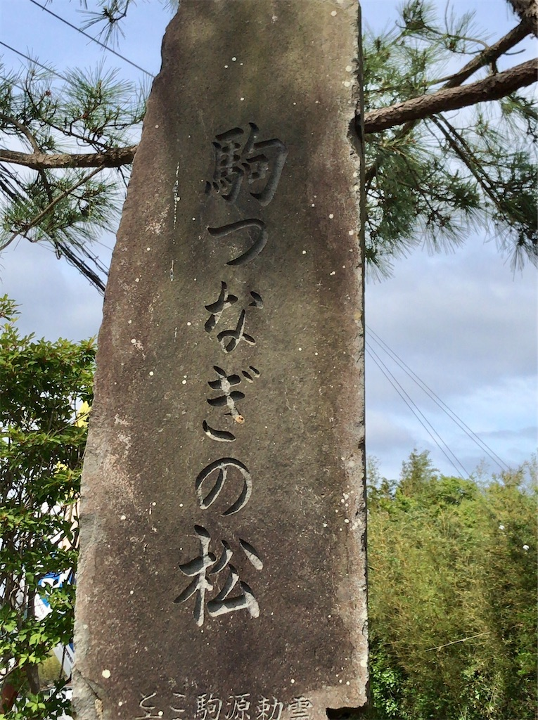 f:id:yokohamamiuken:20200523152934j:image