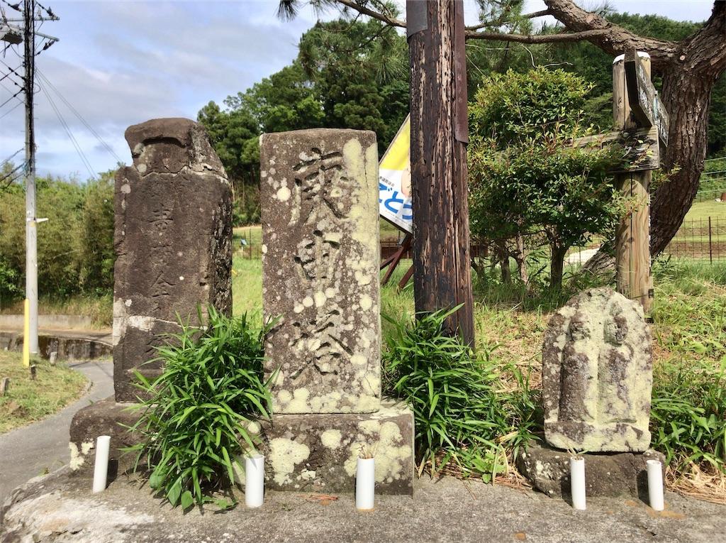 f:id:yokohamamiuken:20200523152941j:image
