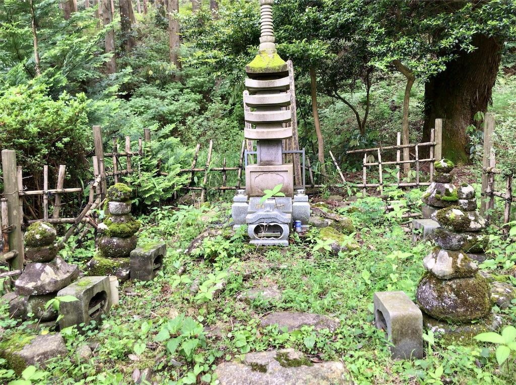 f:id:yokohamamiuken:20200523153356j:image