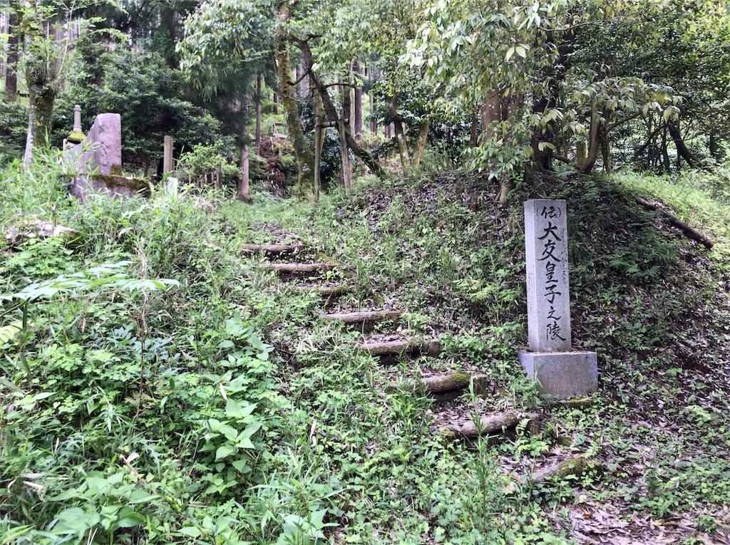 f:id:yokohamamiuken:20200523153410j:image