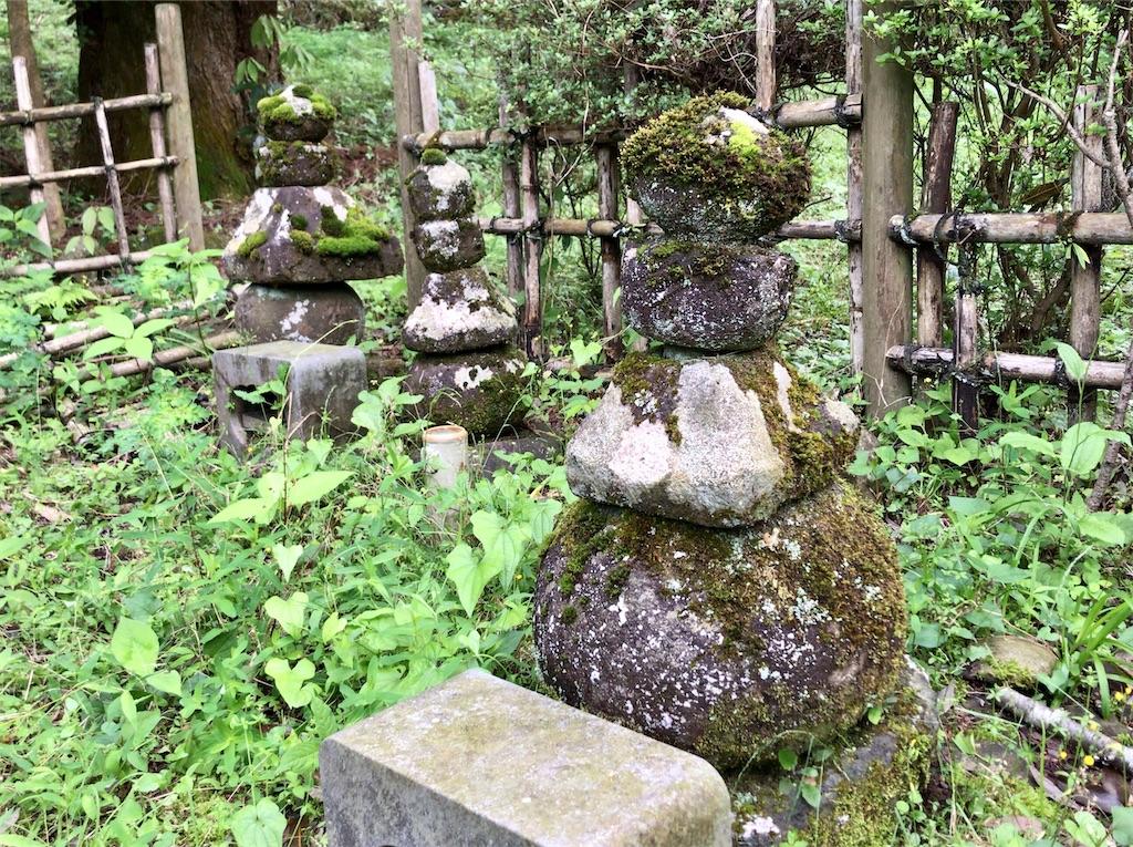 f:id:yokohamamiuken:20200523153447j:image