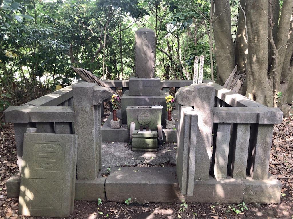 f:id:yokohamamiuken:20200603181637j:image