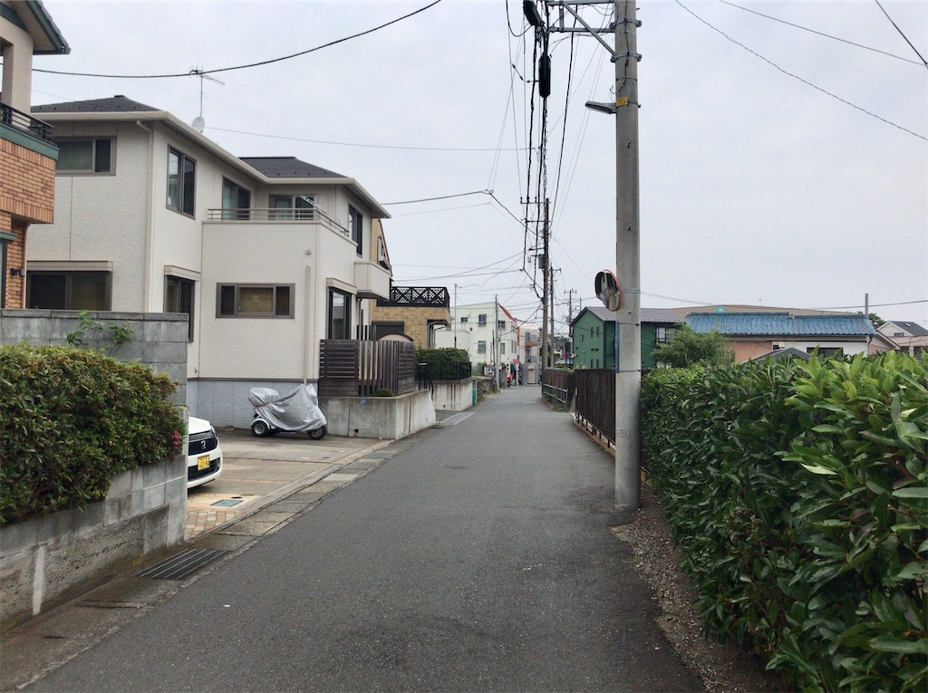 f:id:yokohamamiuken:20200603183453j:image
