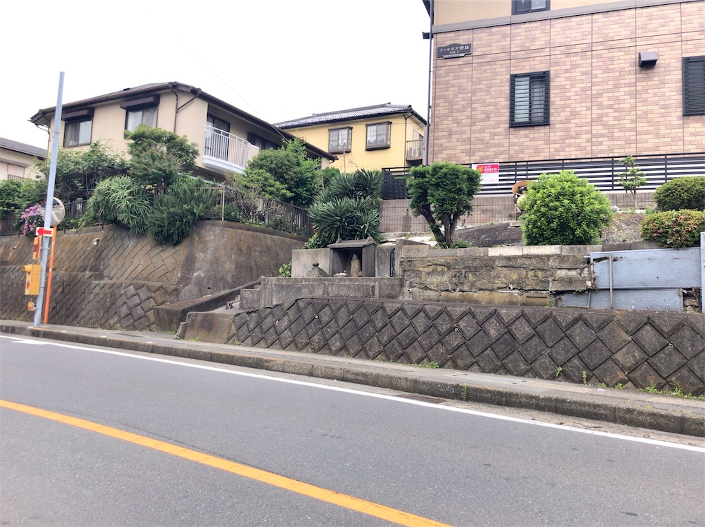 f:id:yokohamamiuken:20200603183729j:image