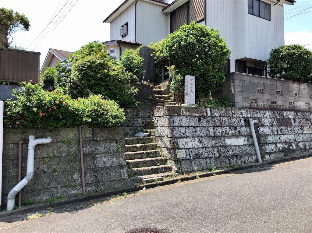 f:id:yokohamamiuken:20200608133446j:image