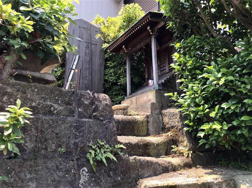 f:id:yokohamamiuken:20200608133455j:image