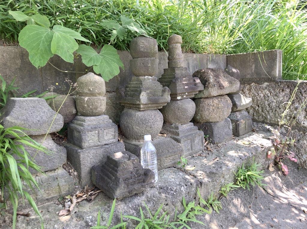 f:id:yokohamamiuken:20200608133624j:image