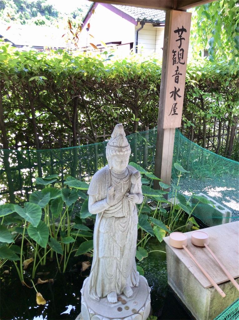 f:id:yokohamamiuken:20200608133713j:image