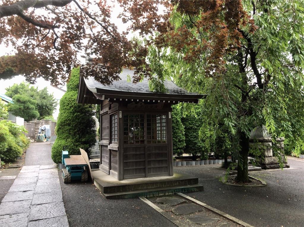 f:id:yokohamamiuken:20200625223727j:image