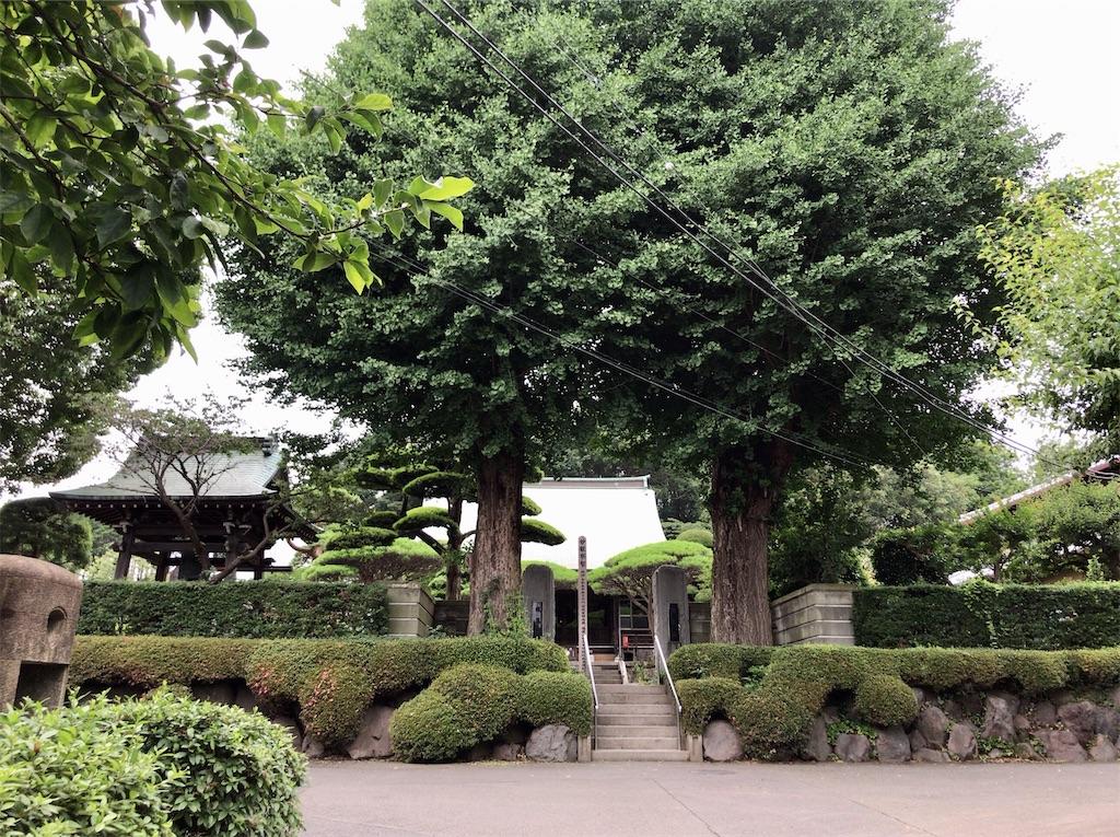 f:id:yokohamamiuken:20200625231350j:image