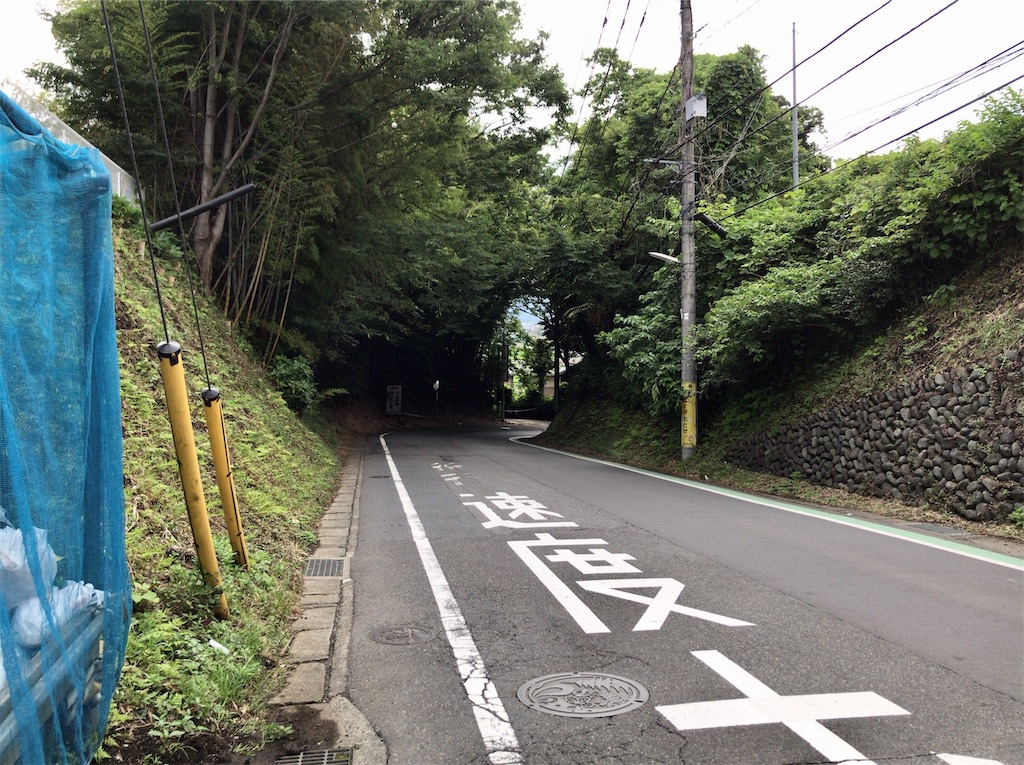 f:id:yokohamamiuken:20200626052045j:image
