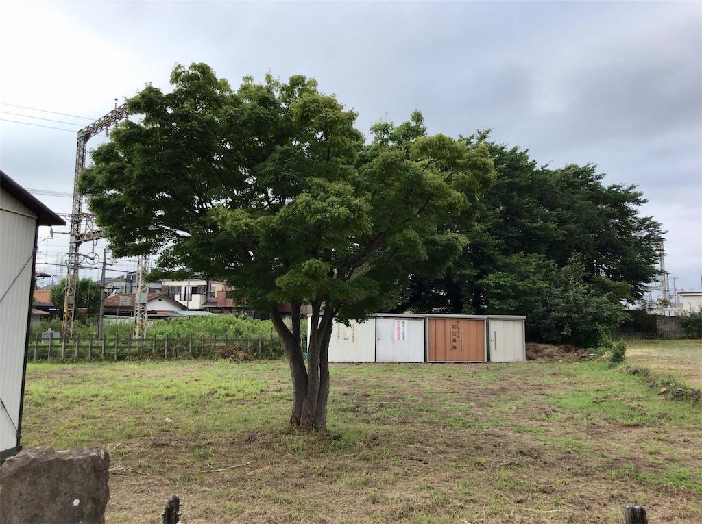 f:id:yokohamamiuken:20200626052352j:image