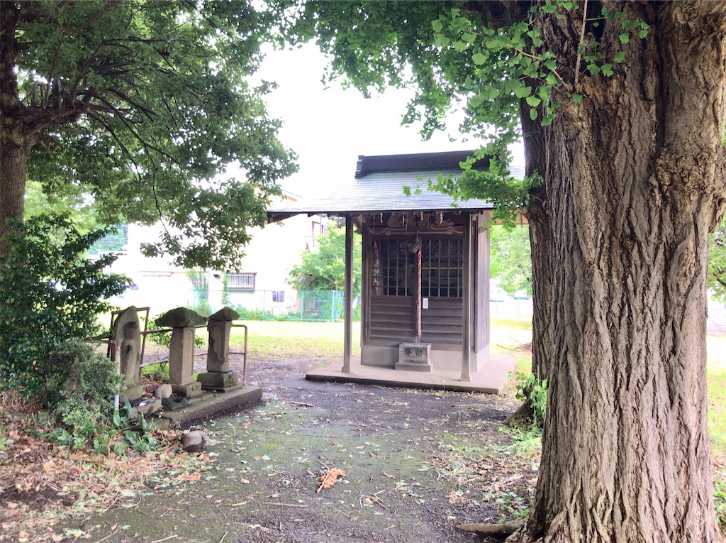 f:id:yokohamamiuken:20200626052427j:image