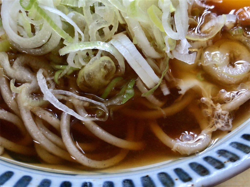 f:id:yokohamamiuken:20200704095807j:image