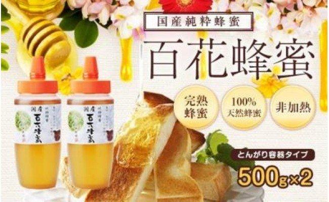 f:id:yokohamamiuken:20200724100901j:plain