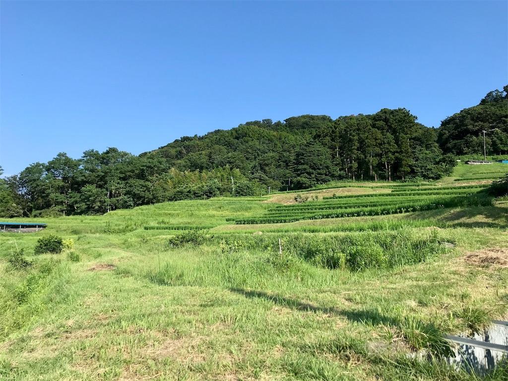 f:id:yokohamamiuken:20200804181134j:image