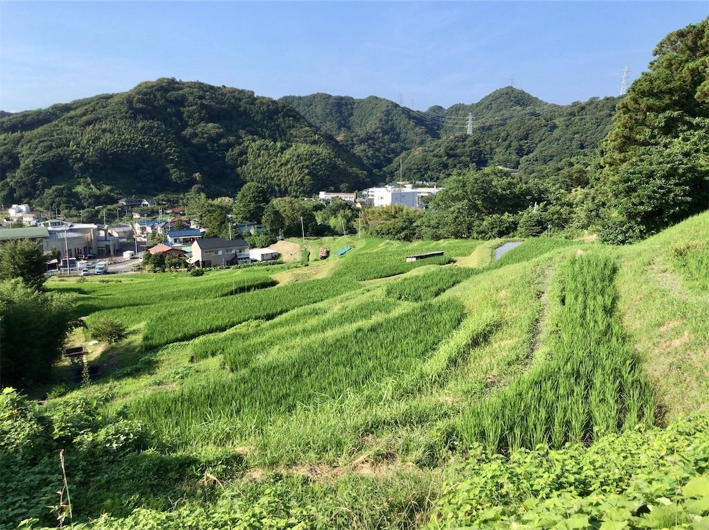 f:id:yokohamamiuken:20200804181137j:image
