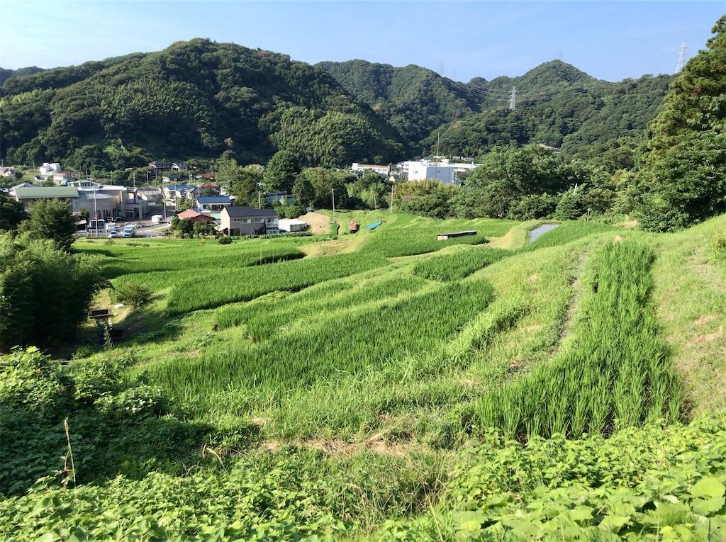 f:id:yokohamamiuken:20200804181140j:image