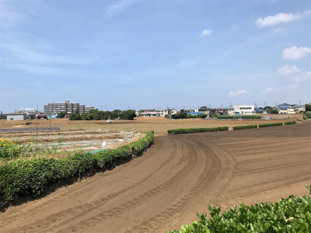 f:id:yokohamamiuken:20200819214123j:image
