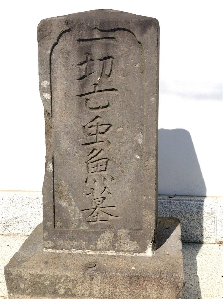 f:id:yokohamamiuken:20200819220905j:image