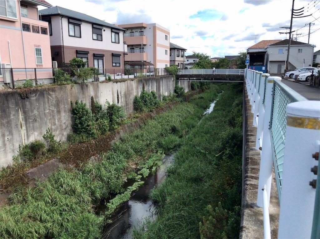 f:id:yokohamamiuken:20200827190104j:image