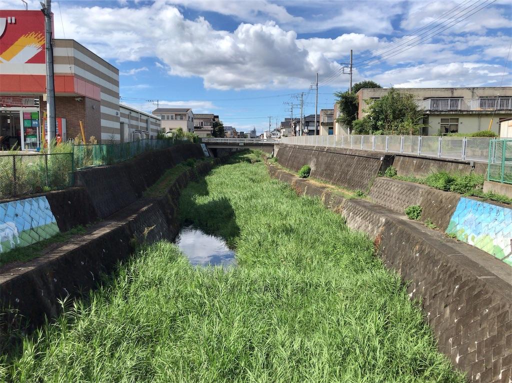 f:id:yokohamamiuken:20200827190112j:image
