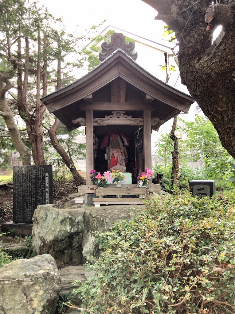 f:id:yokohamamiuken:20200827191207j:image