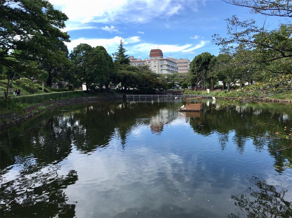 f:id:yokohamamiuken:20200827191932j:image