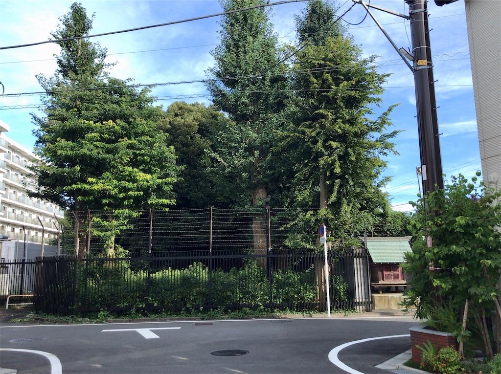 f:id:yokohamamiuken:20200827192008j:image