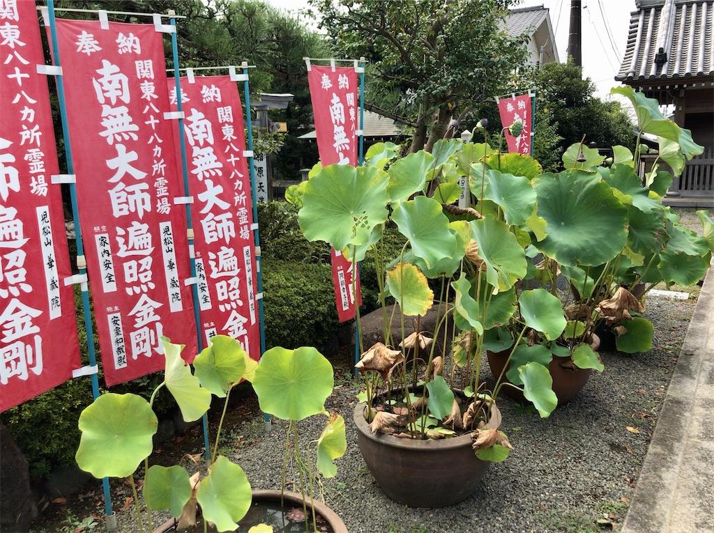 f:id:yokohamamiuken:20200828131440j:image
