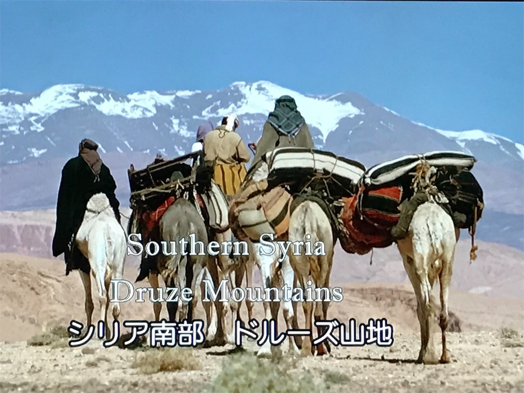 f:id:yokohamamiuken:20201013013333j:image
