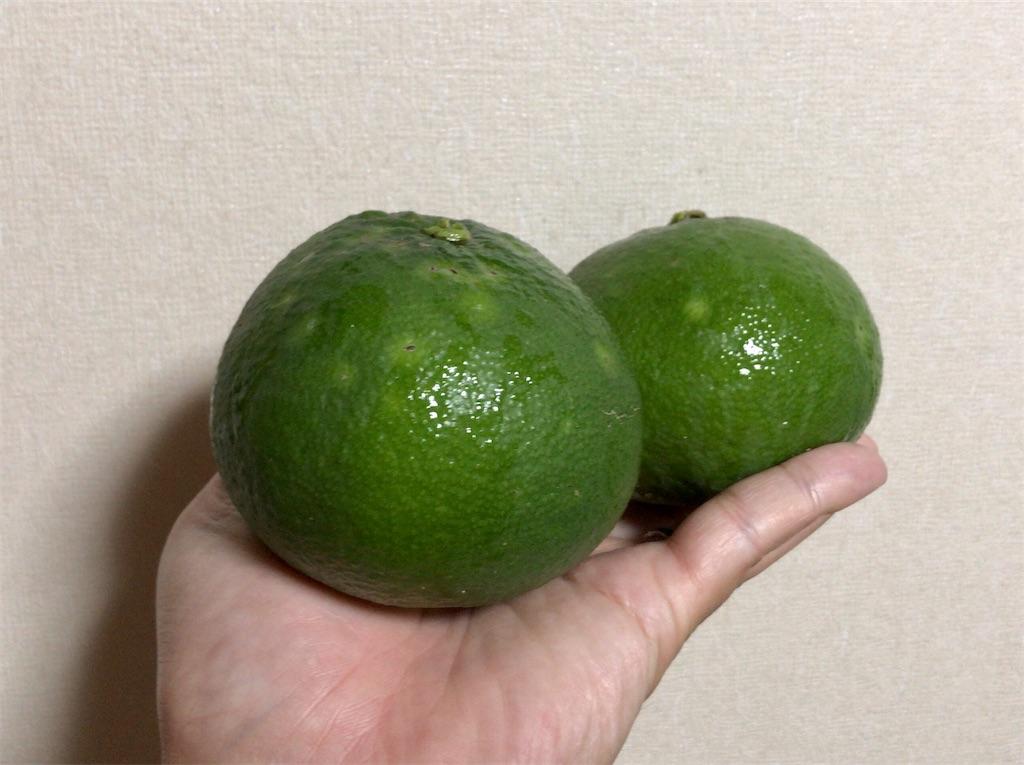 f:id:yokohamamiuken:20201015223458j:image