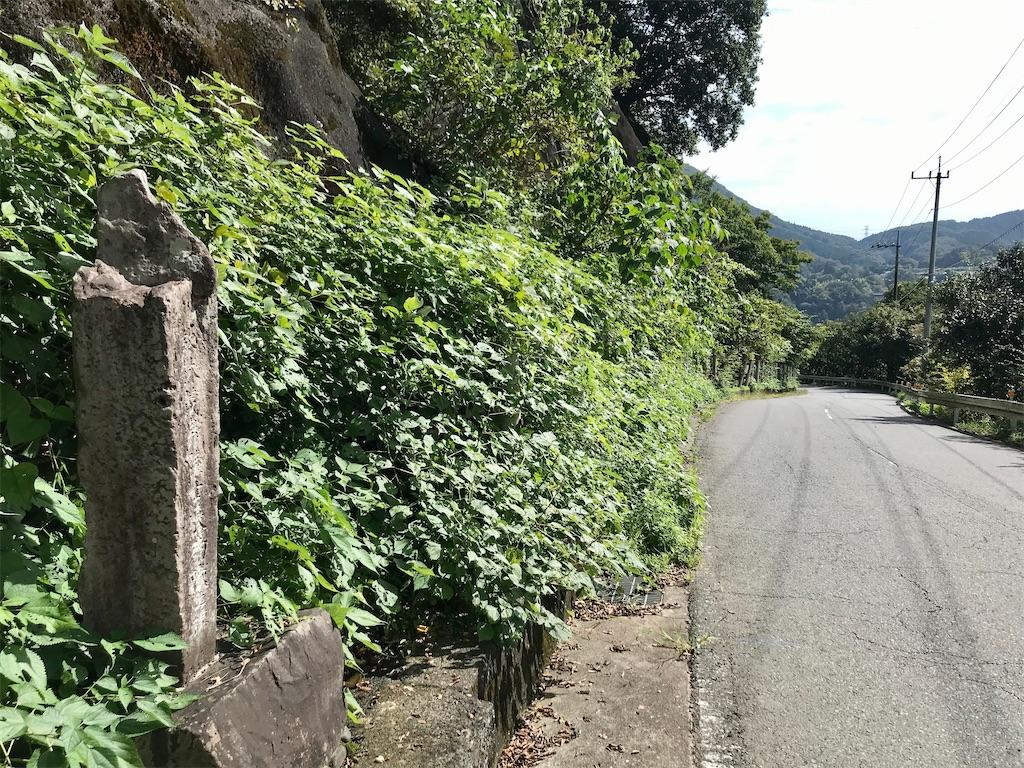 f:id:yokohamamiuken:20201023072501j:image