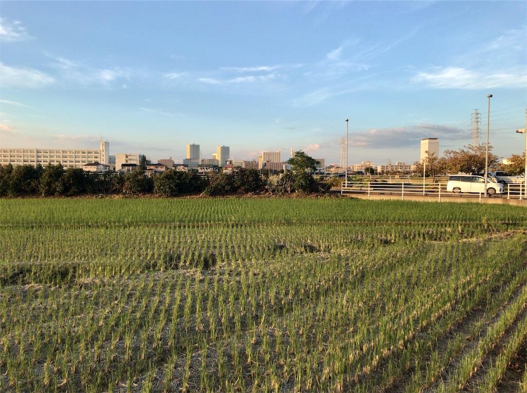 f:id:yokohamamiuken:20201023094446j:image